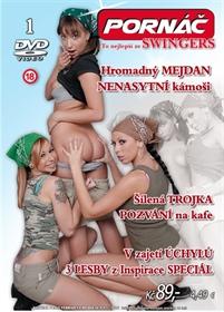 Obrázek DVD Pornáč 1.